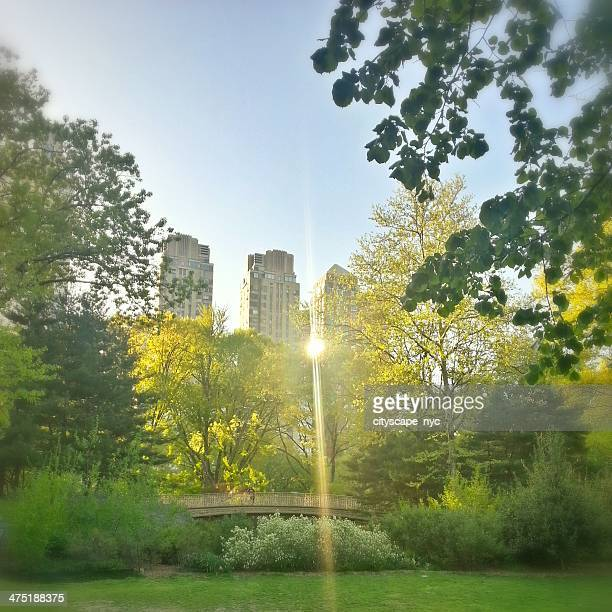 USA, New York City, Manhattan, View of Midtown Manhattan from Central Park