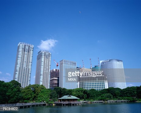 Skyscrapers and Japanese garden : Stock Photo