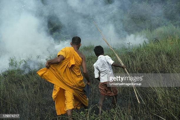 Slash Burn Agriculture Sri Lanka Burning Grassland To Expand Farmland A monk is trying to prevent slash and burn agricultural practices that damage...