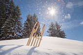traditional sled in the snow