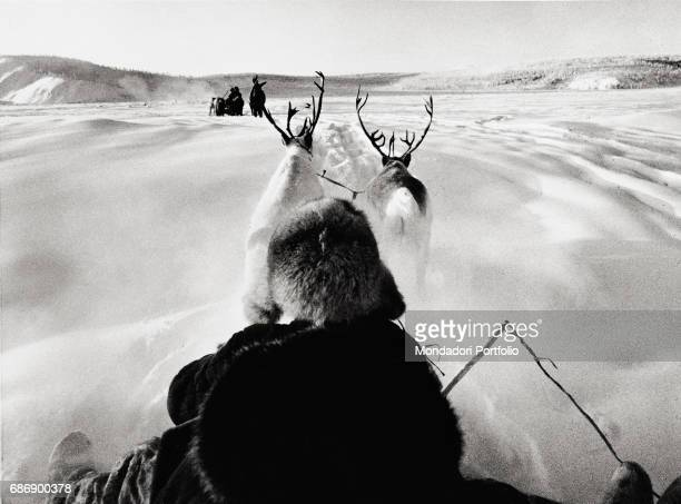 Sledge carried by reindeers in the snowy scenery of Siberia 65 Celsius degree below zero This picture is taken from the monography 'Mario De Biasi Il...