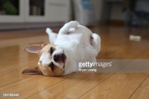 Sleep Mode : Stock Photo