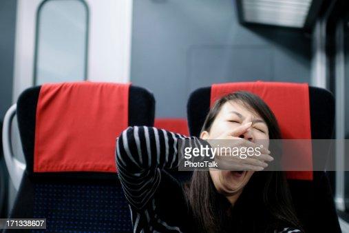 Sleepy Passenger - XLarge
