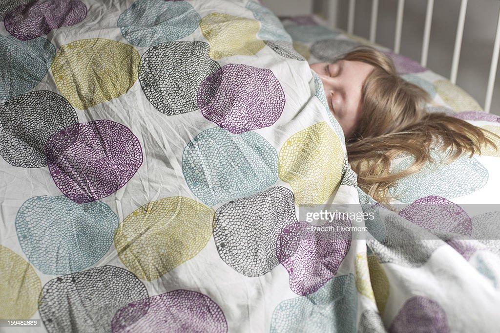 Sleepy : Stock Photo