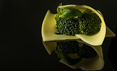 Slice Edamer cheese with broccoli and basil sprig isolated on dark background with reflection.