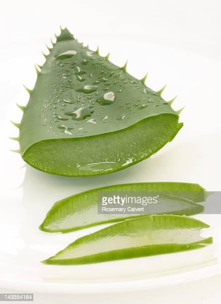 Sliced aloe vera leaf releasing healing juices
