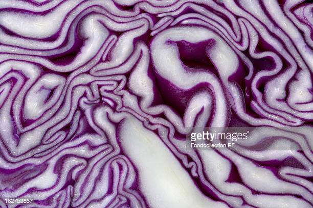 Sliced red cabbage, extreme close-up