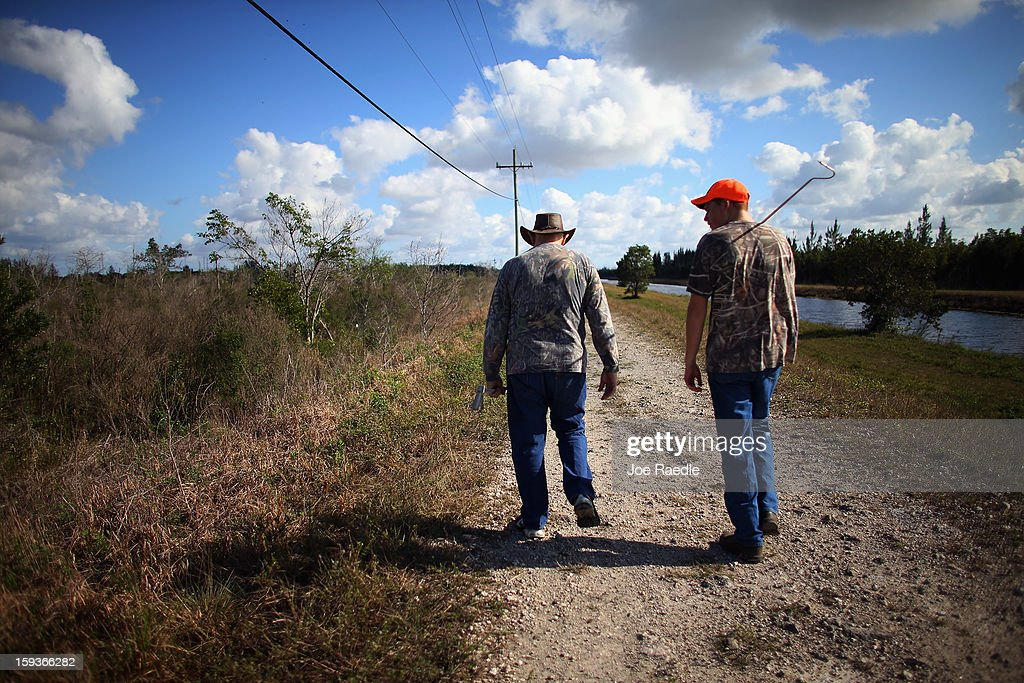 BR Slocum (L) and his grandson Kyle Storch hunt for python's in the Florida Everglades on the first day of the 2013 Python Challenge on January 12, 2013 in Miami, Florida.The Florida Fish and Wildlife Conservation Commission and its partners launched the month long 2013 Python Challenge to harvest Burmese pythons in the Florida Everglades, a species that is not native to Florida.The contest features prizes of $1,000 for catching the longest snake and $1,500 for catching the most.
