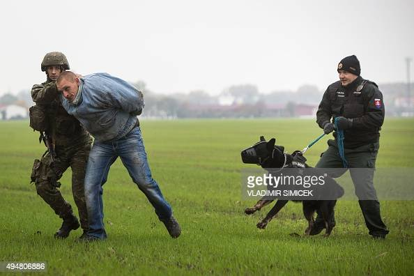 A Slovak soldier and a Slovak policeman with a dog detain a man playing the role of an 'illegal migrant' during a joint exercise of Slovak police and...