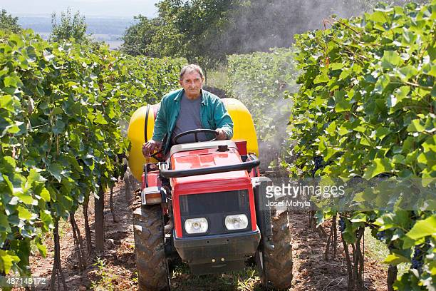 Piccola agricoltura macchinari spray per in azione nel vigneto