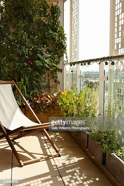 A small balcony garden with deck chair