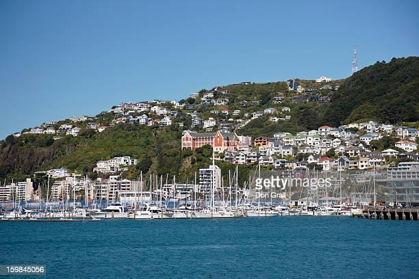Small boat harbor in Wellington, NZ