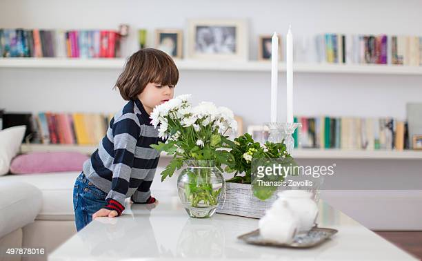 Small boy smelling flowers