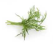 Top view of small bundle of green dill sprigs on the white background