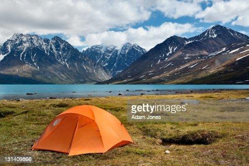 Small camping tent in wilderness : Bildbanksbilder