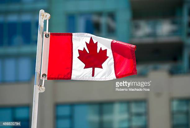 Small Canadian flag waving in the air with a background of windows from a highrise in downtown Toronto
