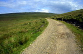 Small country road going into the distance Upper Teesdale England