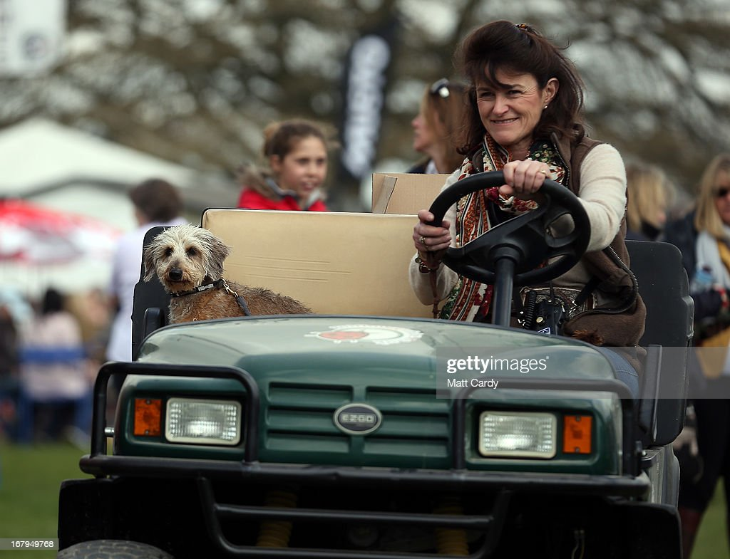 A small dog watches from a buggy as visitors to the Badminton Horse Trials browse stalls on the first full day of the Mitsubishi sponsored event on May 3, 2013 in Badminton, Gloucestershire. The event - which runs until Monday and is held on the Duke of Beaufort's estate, is now in its 22nd year but was cancelled last year due to flooding. It is widely seen by many as one of the highlights in the equestrian eventing calendar.