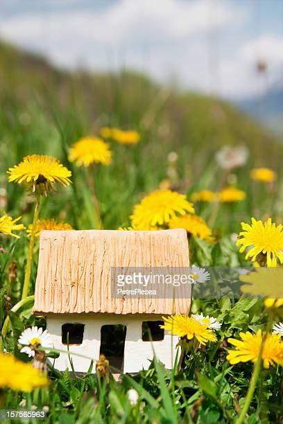 Piccola casa ecologica in erba verde