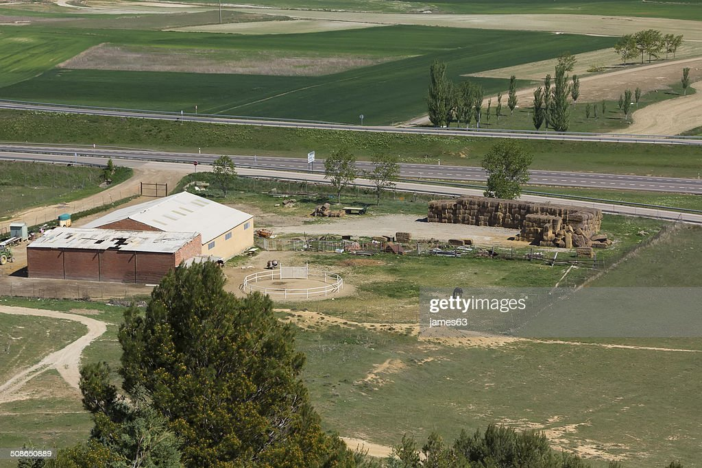 small farm and horse stables in the field : Stock Photo