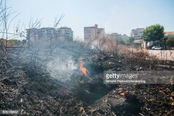 A small fire start to burns an area close to the houses on August 03 2017 in Crotone Italy An intense heatwave is sweeping across many regions of...