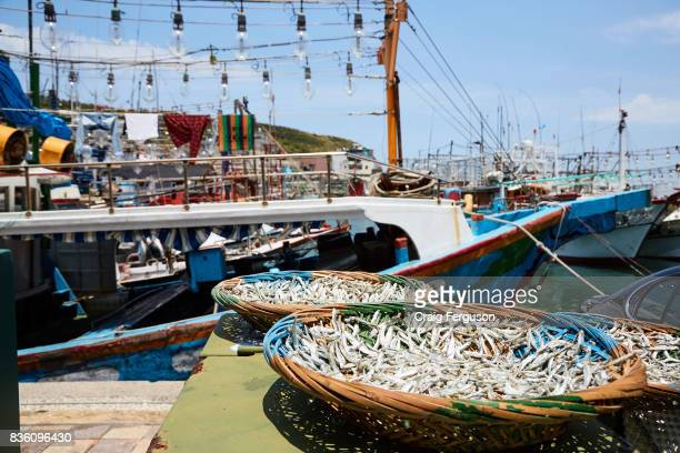 Small fish is placed in baskets to dry in the sun at the edge of a fishing port The fish will often be mixed with peanuts or almonds and consumed as...