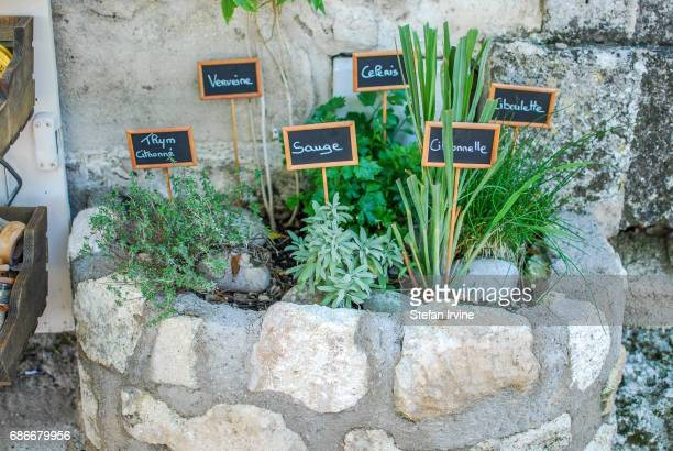 A small flowerbed with assorted labelled herbs growing outside a shop in BauxdeProvence