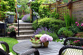 Small townhouse perennial summer garden.