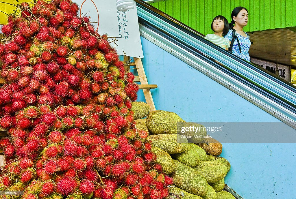 CONTENT] A small girl and her mother take an escalator down past a pile of colorful rambutans and Durians. Durians are a notoriously malodorous fruit. The little girl's expression shows that she has smelt the durians.