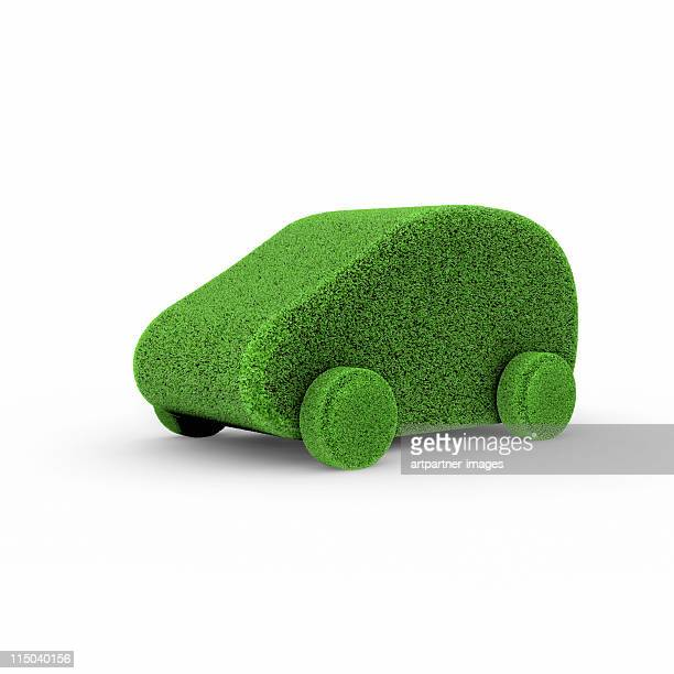 Small Green Car covered with Lawn