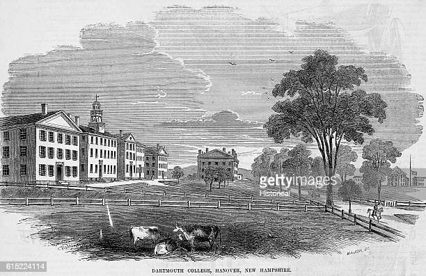 A small group of cows graze near Dartmouth College Hanover New Hampshire The college was founded in 1769