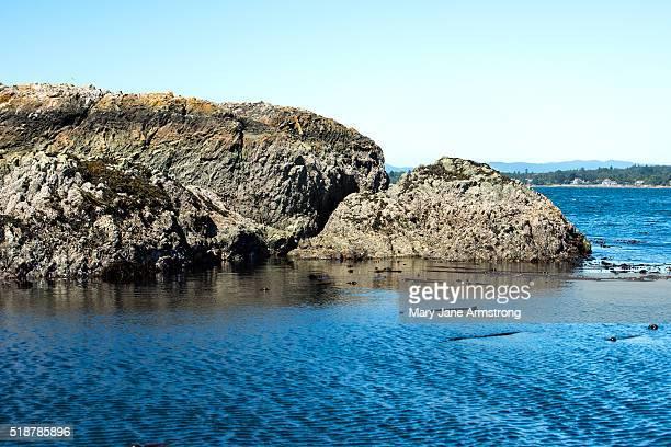 Small Island off the coast of Vancouver Island