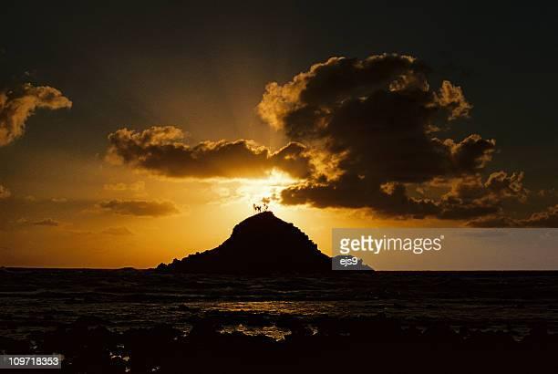 小さなマウイ、ハワイ島の日の出