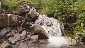 Small mountain river with a lot of stones in the forest.