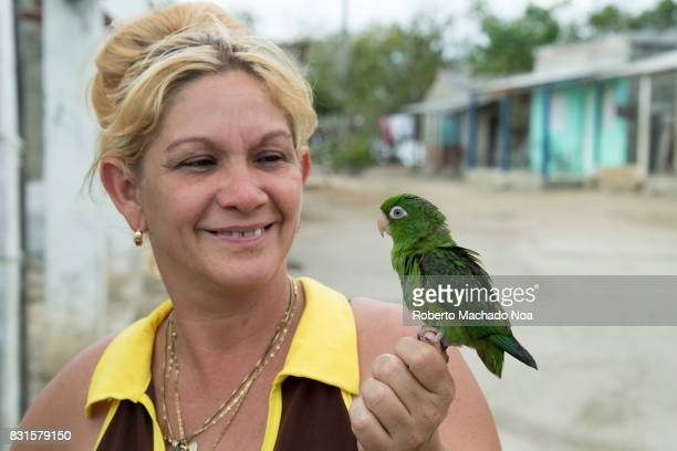 Small parrot pet Blonde woman in collared dress and high bun smiling at parrot sitting on her hand
