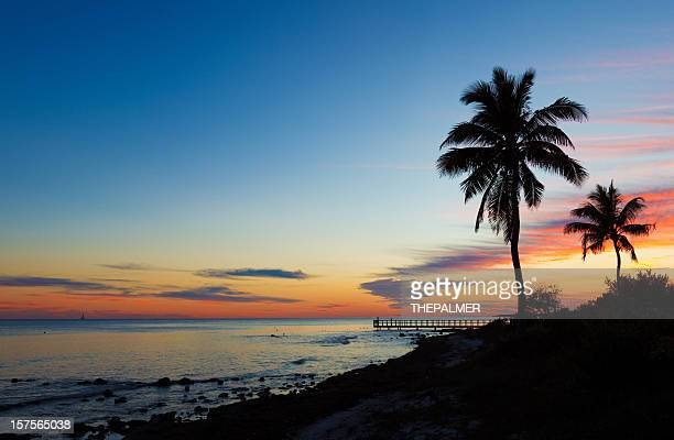 small pier and palm trees silhouettes at sunset