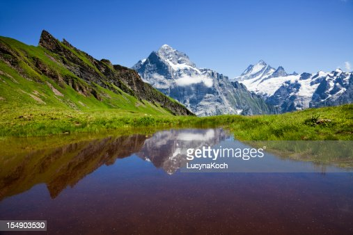 Small pond nestled in snowy mountains and green landscape