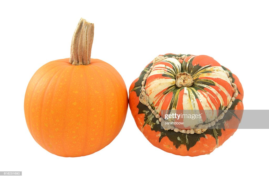 Small pumpkin and Turks Turban squash : Foto de stock
