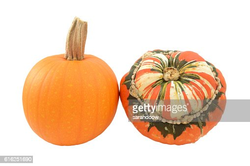 Small pumpkin and Turks Turban squash : Foto de stock