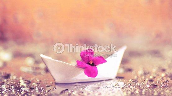 Small purple flower in white origami paper boat stock photo thinkstock small purple flower in white origami paper boat stock photo mightylinksfo