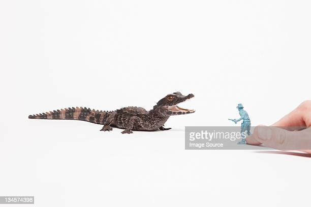 Small reptile attacking toy soldier