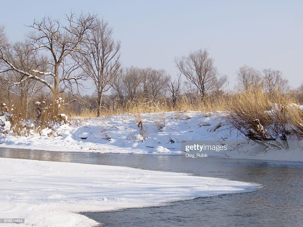 Pequeño río en el invierno. : Foto de stock