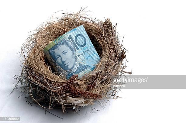 Small Savings Nest Egg
