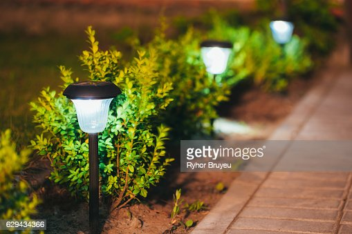 Small Solar Garden Light, Lantern In Flower Bed. Garden Design. : Stock Photo