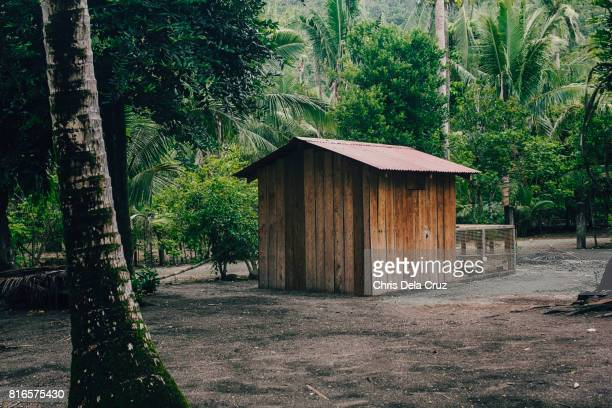 Small storage house with coconut tree