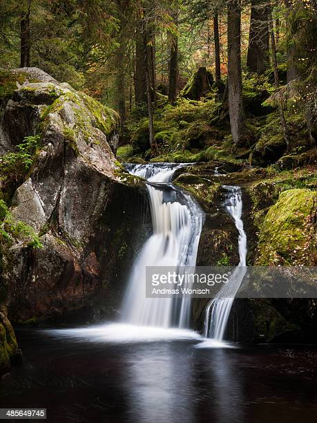 Small Waterfall in Fall Forest