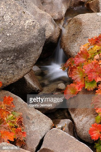 Small waterfall on creek in El Dorado National Forest in Californias Sierra Nevada mountain range, California, USA