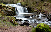 One of a series of waterfalls on a nature trail in the Brecon Beacons. Because of the recent rain the creek is flowing fast creating a beautiful little waterfall.