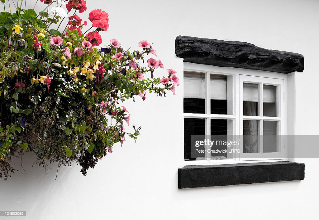 Small window with flowers on Cheshire cottage : Stock Photo