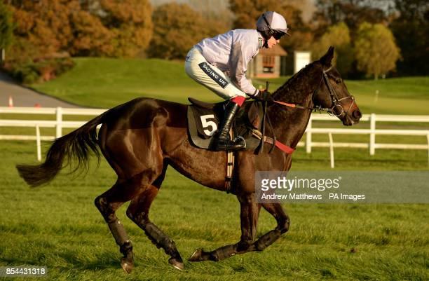 Smart Money ridden by jockey Aidan Coleman goes to post in the Delia And Kenny 40th Anniversary Handicap Hurdle
